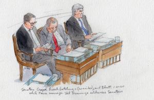 Trump Impeachment Trial Cartoon.